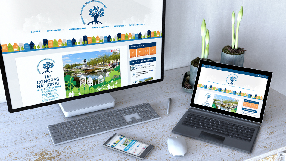 le site internet de la FVCS